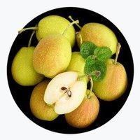 京觅 新疆库尔勒香梨 2.5kg/箱