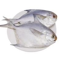 鲜优虹 舟山鲳鱼 500g