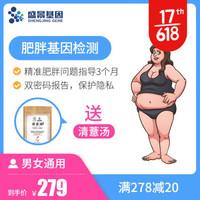 盛景基因 肥胖基因检测 精准塑形  体重控制 营养饮食 *4件