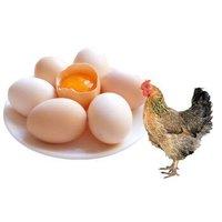 半山溪谷 土鸡蛋 10枚 *4件