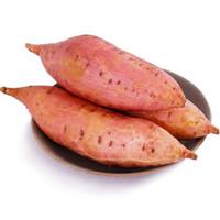 豫淮农场 西瓜红蜜薯 单果150g~200g 约5斤装