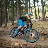Giant 捷安特 956192 成人变速电动山地助力自行车