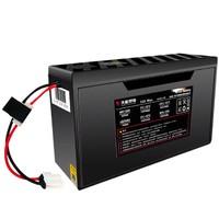 天能 48V12Ah 电动车锂电池