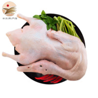 京东PLUS会员:黄河畔 新鲜嫩鸭子麻鸭 1kg/只 *3件