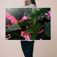 艺术品:Local Preacher 作品 《酸棕榈》 Palms on acid