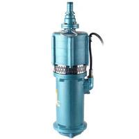 沪大 Q10-40/3-2.2QDQ小型潜水电泵(小老鼠)系列  电压380V口径50mm