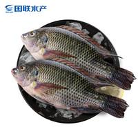 京东PLUS会员:国联 三去罗非鱼 700g 2条 *10件