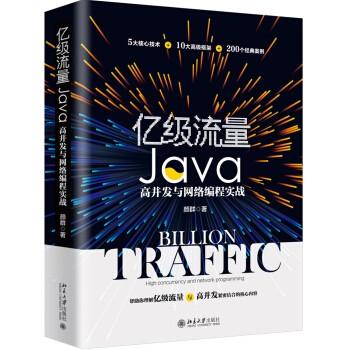 《亿级流量 Java高并发与网络编程实战》