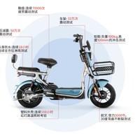 Luyuan 绿源 圣甲虫电动自行车 48V20Ah锂电池