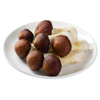菌香园 姬松茸 250g 火锅食材 新鲜蔬菜