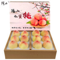 【顺丰空运】正宗无锡阳山水蜜桃湖景桃子新鲜水果 单果4两-5两大果 12个礼盒装 净重5斤多