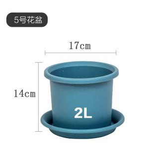 【新品上市】爱丽思彩色Deepot深型月季铁线莲花盆树脂花盆爱丽丝塑料加仑花盆 5号蓝色(送盆托) 大