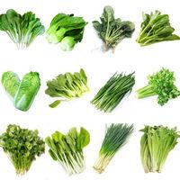 四季播种蔬菜种子 50包蔬菜+肥2包