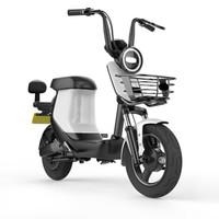 SUNRA 新日 xc1 领先版 48v20ah锂电池 电动车