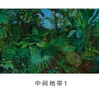 艺术品:鹿莹《中间地带2》限量版签名版画装饰画 带卡纸