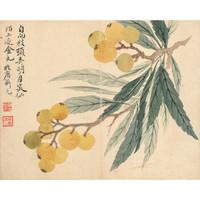 艺术品:《花卉十开之枇杷图》 恽寿平 水墨画国画背景墙挂画 咖啡实木国画框