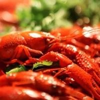 小龙虾季收官之作!上海静安逸扉酒店 小龙虾主题自助晚餐