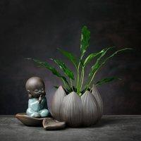 京东PLUS会员: 燚窑 绿萝水培植物花瓶 坐莲-轻语小僧(不含植物)