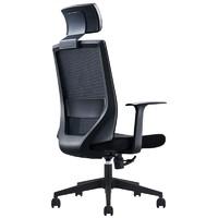 SITZONE DS-220 家用电脑椅 (尼龙脚款)