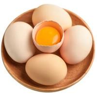 京东PLUS会员:山林散养土鸡蛋 10枚        *4件