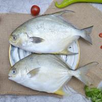 水巷口 国产冷冻金鲳鱼 700g/2条 *8件