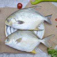 限地区:水巷口 国产冷冻金鲳鱼 700g/2条 *5件 +凑单品