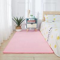AISIDUN 爱思顿 客厅地毯 70*200cm