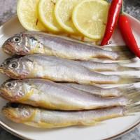 限地区、抄作业:渔港 渤海小黄鱼1000g  *20件 +凑单品