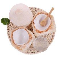泰国进口椰青 椰子 9个装 大果 单果850g以上  *3件