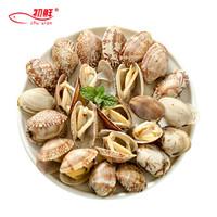 初鲜 冷冻原汁杂色蛤蜊 1000g 花蛤 *6件