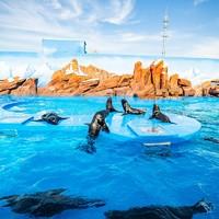 双11预售:上海海昌海洋公园门票  儿童季卡