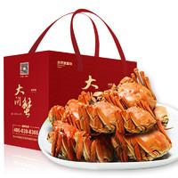 澄萃 全母螃蟹 特大10只大闸蟹 3.5两*10只
