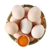 陈小四水果 新鲜农家鸡蛋 10枚