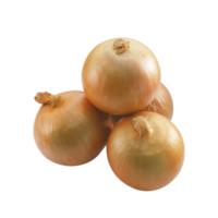 农博鲜 农家自种黄皮紫皮洋葱 3斤