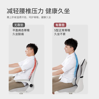 PPW护腰靠垫办公室腰靠记忆棉座椅靠背孕妇椅子久坐腰垫靠枕腰枕