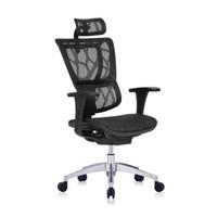 Ergonor  保友办公家具 人体工学电脑椅 黑色(仿生网) 高配版