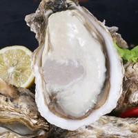 京东PLUS会员:渔吻 乳山生蚝 肉带壳生鲜生蚝 XXL 带箱5斤(约20-24个)