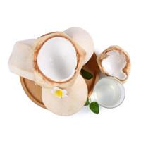 京觅 泰国进口椰子 9个 单果850g以上 *3件
