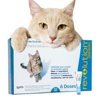 大宠爱 猫驱虫药 2.6-7.5kg猫用 6支整盒*2盒