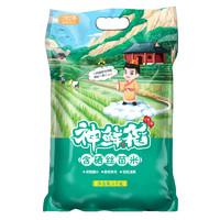 88VIP:一年一季 神鲜稻 含硒丝苗米 5kg *3件
