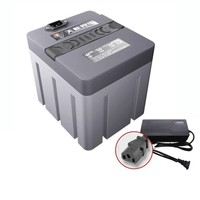 天能 T4820 48V20Ah M2电动车锂电池