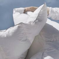 SIDANDA 诗丹娜 波兰95%可水洗白鹅绒冬被