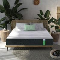 瞌睡猫竹炭环保床垫 顾家90%天然乳胶床垫 180*200*24cm