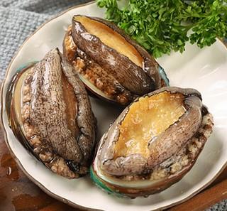 新鲜活冻大鲍鱼 500g