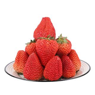 芬果时光 新鲜大凉山奶油草莓 巧克力草莓  新鲜水果 2.7-3斤装