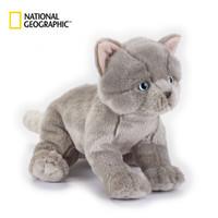 国家地理NG萌宠系列 礼盒版 26cm 英国短毛猫 仿真动物毛绒玩具公仔亲子送女友生日礼物