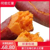 何爸红薯湛江遂溪农家新鲜现挖沙地蜜薯糖心红心番薯香甜地瓜山芋