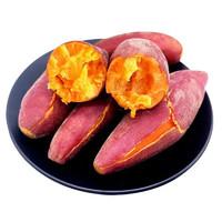 邢台馆 烤红薯专属品种 烟薯25 5斤装