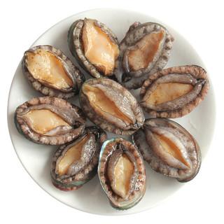 御鲜之王 鲜活大连鲍鱼海鲜水产 烧烤食材 鲍鱼 1000g 12-16只