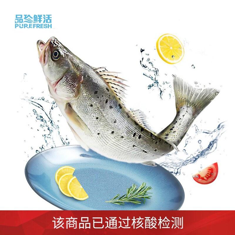 品珍鲜活 三去白蕉海鲈鱼净膛450g 珠海特产海鲜鱼类烧烤生鲜 核酸已检测
